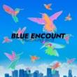 BLUE ENCOUNT ハミングバード