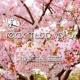 Yuuichi Komatsu YK Relax Music Vol.3