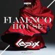 lapix Flamenco House