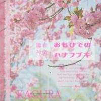 KAGURA 赤い花 -Blood Hibiscus