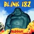 Blink-182 Carousel