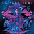 ENDRECHERI one more purple funk... -硬命 katana- (Complete Edition)