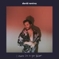 David Ramirez I Wanna Live in Your Bedroom