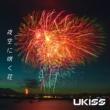 U-KISS 夜空に咲く花
