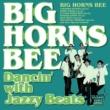 BIG HORNS BEE Key Station