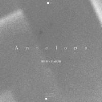 三浦大知 Antelope