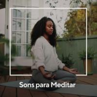 Sons da Natureza Sons Para Meditar