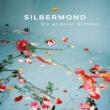 Silbermond Ein anderer Sommer