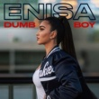 Enisa Dumb Boy