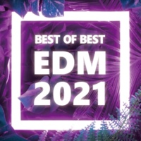 PARTY HITS PROJECT BEST OF BEST 2020 - 2021