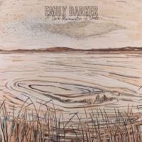 Emily Barker A Dark Murmuration of Words