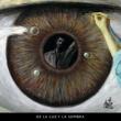 Luis Eduardo Aute De la Luz y la Sombra (En Directo)