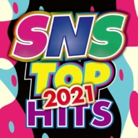 PARTY HITS PROJECT SNS TOP HITS 2021