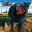 blink-182 Dude Ranch