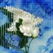 Ryohu Flower