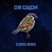 Dr. Gwon Dead Bird