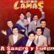 Super Lamas El Boleto (Eres Todo Para Mi)