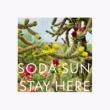 Soda Sun Stay Here