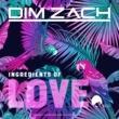 Club Domani/Dim Zach Dance for Money
