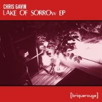 Chris Gavin Everyone Knows