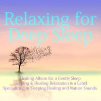 Dreamy Music 睡眠と再生 - Sleep regeneration