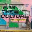 Alborosie For The Culture
