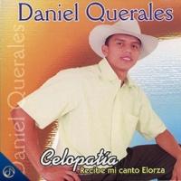Daniel Querales Celopatia Recibe Mi Canto Elorza