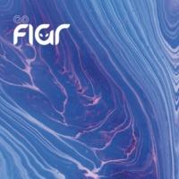 FIGR Go Figr