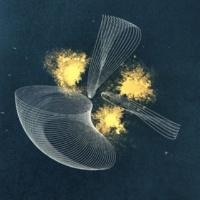 John Hayes & Maxy Dutcher Borealis (Reworked)