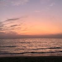 otonoha twilight silence