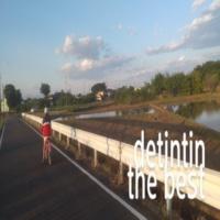 detintin the best