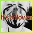 Joji It's a flower