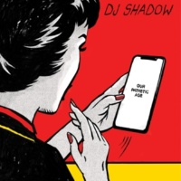 DJ Shadow Nobody Speak