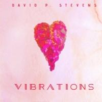 David P Stevens Vibrations