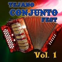Various Artists Tejano Conjunto Fest, Vol. 1