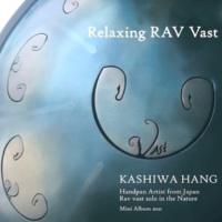 柏ハング Relaxing RAV Vast