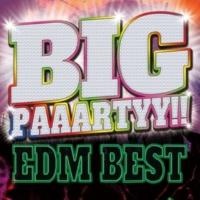 MIX SHOW DJ'S BIG PAAARTYY !! EDM BEST (洋楽 ランキング 人気 おすすめ 定番)