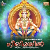 Various Artists Neelimayil