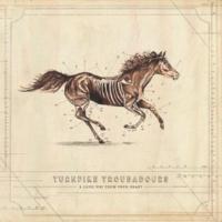 Turnpike Troubadours A Long Way from Your Heart