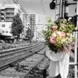 押木宏太 17時の花束