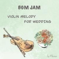 ぴかるん BGM JAM -Violin Melody for Wedding-