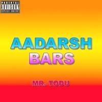 Mr. Todu Aadarsh Bars