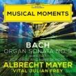 アルブレヒト・マイヤー/Vital Julian Frey J.S. Bach: Organ Sonata No. 3 in D Minor, BWV 527 - I. Andante (Adapt. for Oboe and Harpsichord by Mayer and Frey)