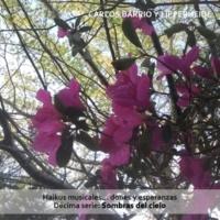 Carlos Barrio y Lipperheide Haikus Musicales... Dones y Esperanzas. Décima Serie: Sombras del Cielo