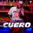 Ceky Viciny/Bassbreaker Cuero