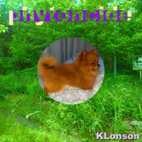 K-Lonson phytoncide