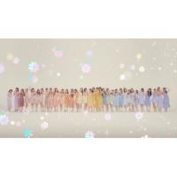 SKE48 恋の根拠
