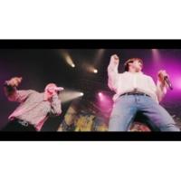 N.Flying Wanna Be (Live-2019 Concert -BROTHERHOOD-@SHINKIBA STUDIO COAST, Tokyo)