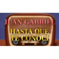 Juan Gabriel Hasta Que Te Conocí (Letra/Lyrics)